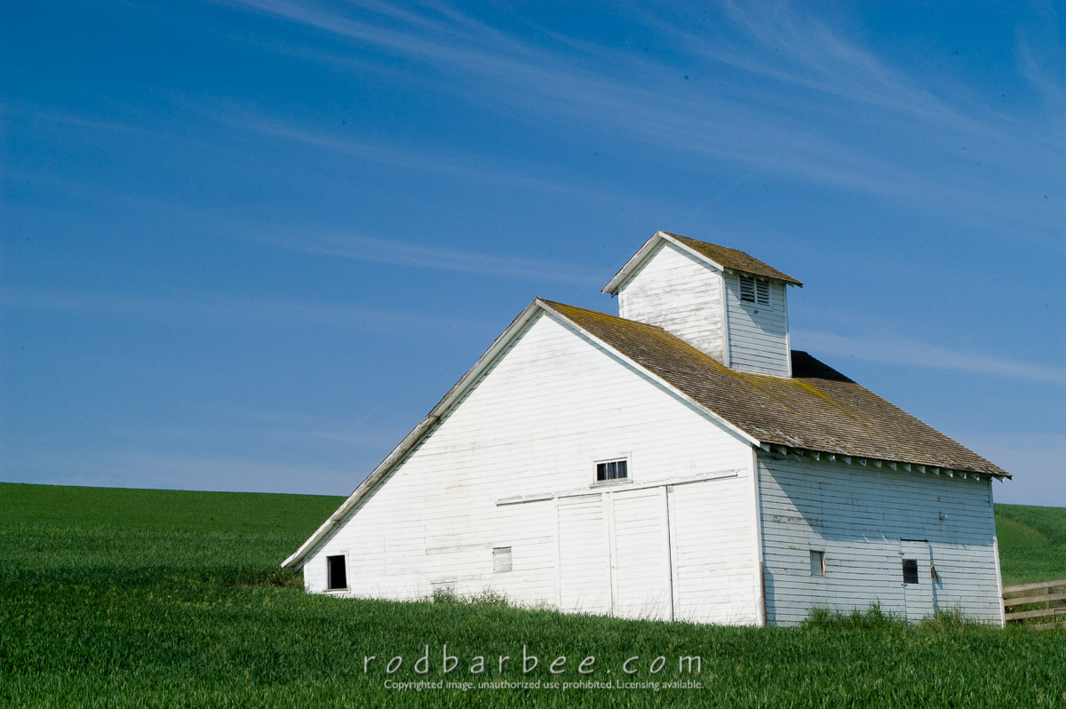 Barbee_030601_1_0532    White barn in the Palouse